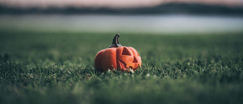 Photo by Shadrach Warid on Unsplash - Pumpkin on grass